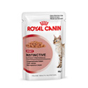 Royal Canin Instinctive in Sauce